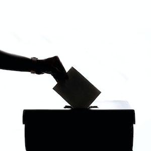Politik shmolitik