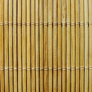 The bamboo ceiling