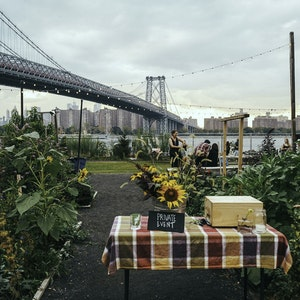 Growing a green space: the evolution of North Brooklyn Farms